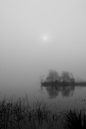 http:  taishimizu.com pictures happy thanksgiving nikon 35mm f2 ai foggy lake thumb.jpg