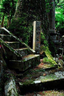 http:  taishimizu.com pictures nikon nikkor 24mm f2 ais review nikon 24mm f2 ais mount koya graveyard stairs thumb.jpg